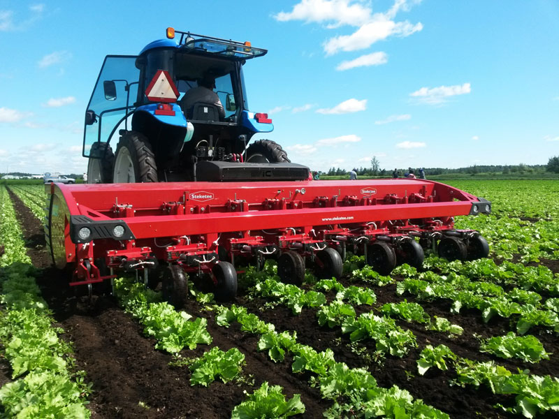 Steketee IC Automatic Weeder - Picture: /uploads/images/devices/steketee/steketee-ic-1.jpg