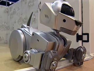 How To Make A Robot Dog At Home