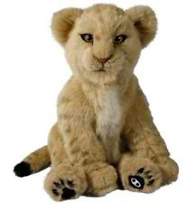 Picture of Lion cub alive